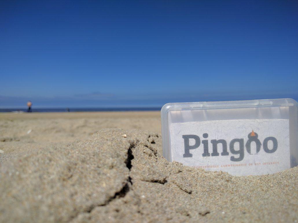 Pingoo at Zandvoort Strand